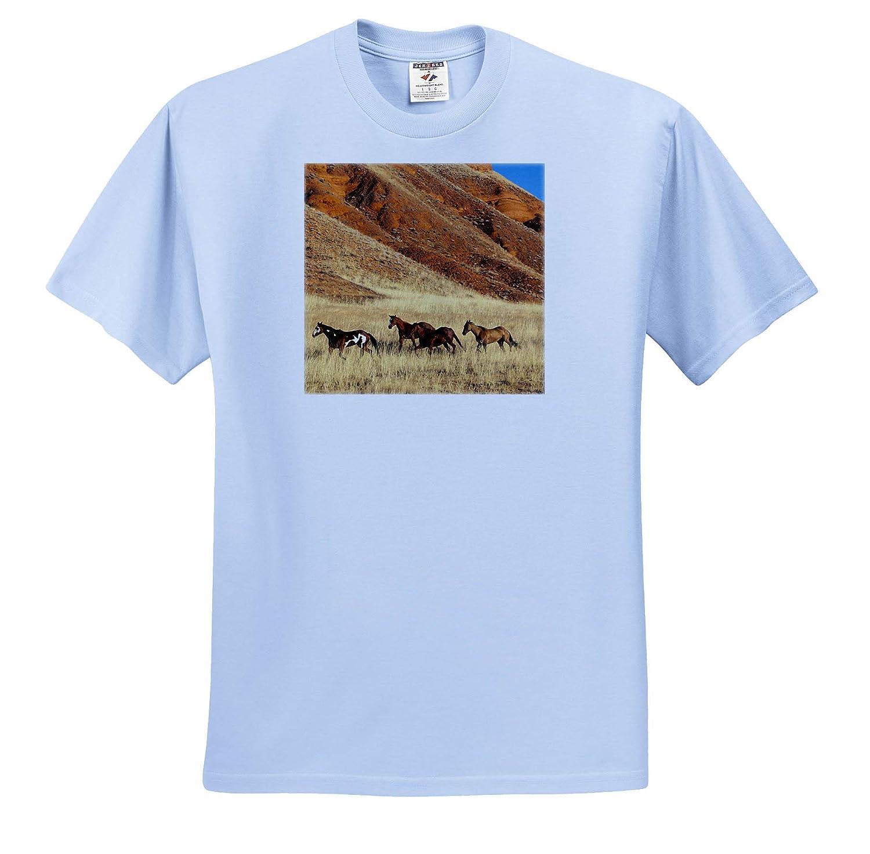 - Adult T-Shirt XL 3dRose Danita Delimont Wyoming Shell Horses Horses Running ts/_315228