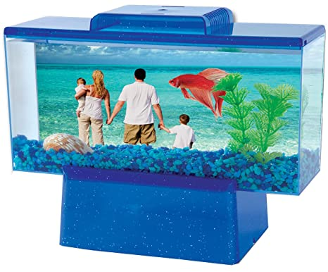 Kollercraft Tom Mini paraíso Betta Acuario Kit, 1/2-GALLON