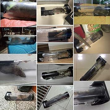 Amazon.com: Rat Mousetrap – 2 piezas de ratones Trap Humane ...
