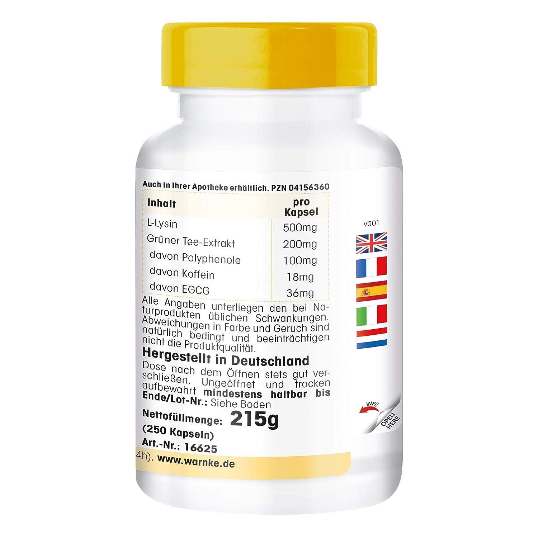 Lisina y Té verde - Vegano - 250 comprimidos - L-Lisina 500mg ...