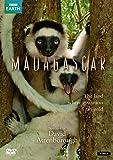 Madagascar [Import anglais]