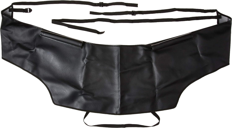 CHP Black Custom Hood Protector 45101-01