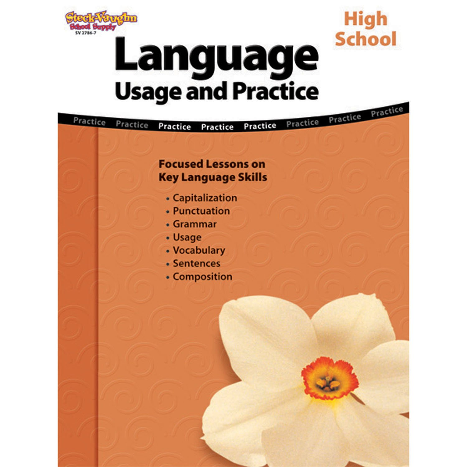 Language: Usage and Practice: Reproducible High School by HOUGHTON MIFFLIN HARCOURT