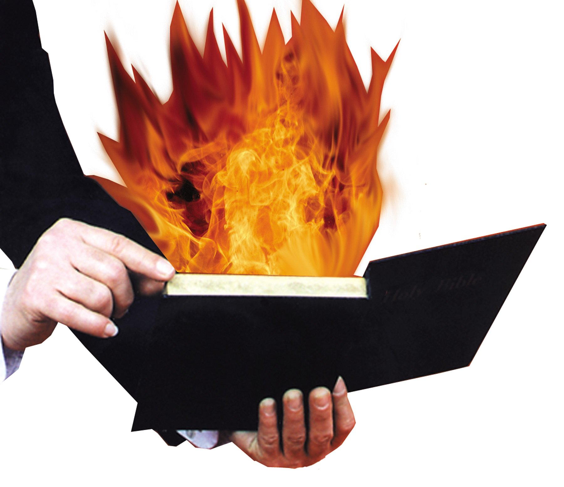 BURNING BOOK by Morris
