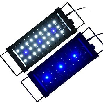 Acuarios Eco Acuario Aufsatz iluminación LED Iluminación de pez Tank lámpara azul + blanco lámpara para agua de mar agua dulce: Amazon.es: Productos para ...