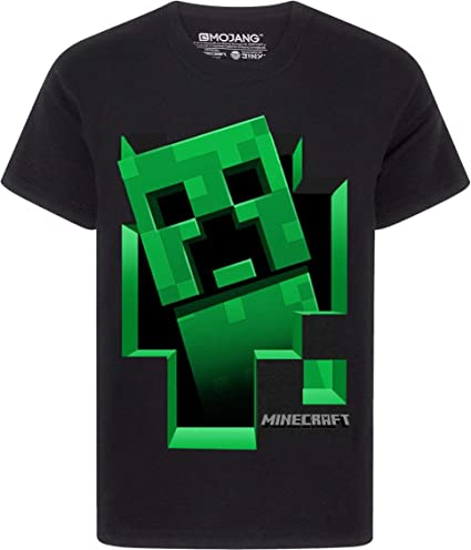 Minecraft Creeper Inside Boy/'s Grey T-Shirt Official kids short sleeve tee