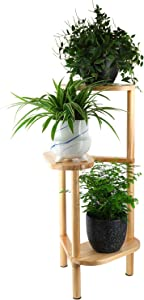 DunGu Plant Stand Indoor Solid Wood 3-Tiers Planter Pot Holder Small Houseplant Display Rack for Indoor Home Living Room Decor