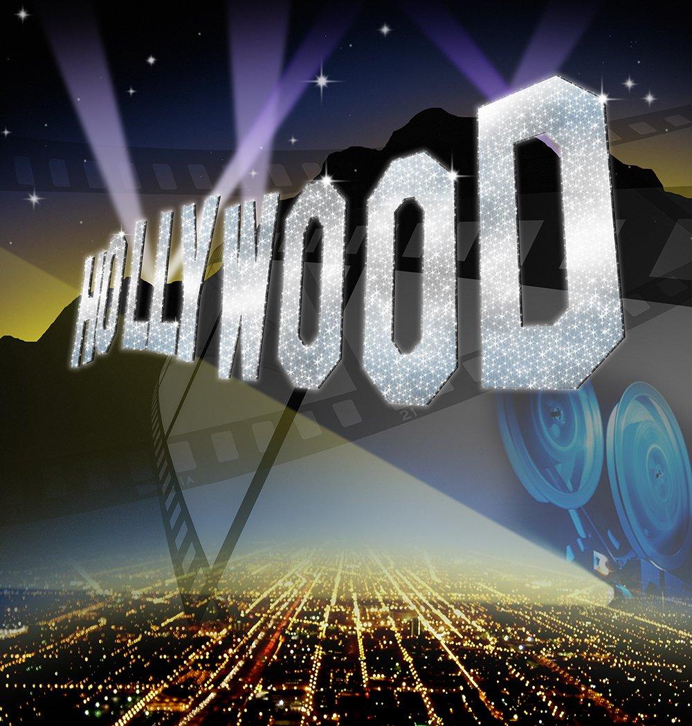 写真バックドロップ – Hollywoodシルバー – 10 x 10 ft。 – 高品質シームレスなファブリック   B00OIBU82M