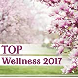 TOP Wellness 2017 – Total Relaxation Sounds for Spa, Massage, Yoga Exercises, Feel Inner Beauty, Healing Touch