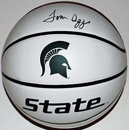 33ce8608a327 TOM IZZO signed (MICHIGAN STATE SPARTANS) Full Size logo basketball W COA -