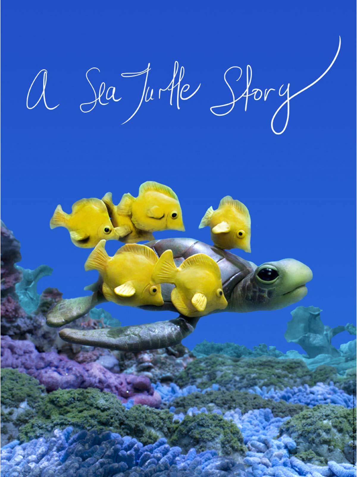 A Sea Turtle Story