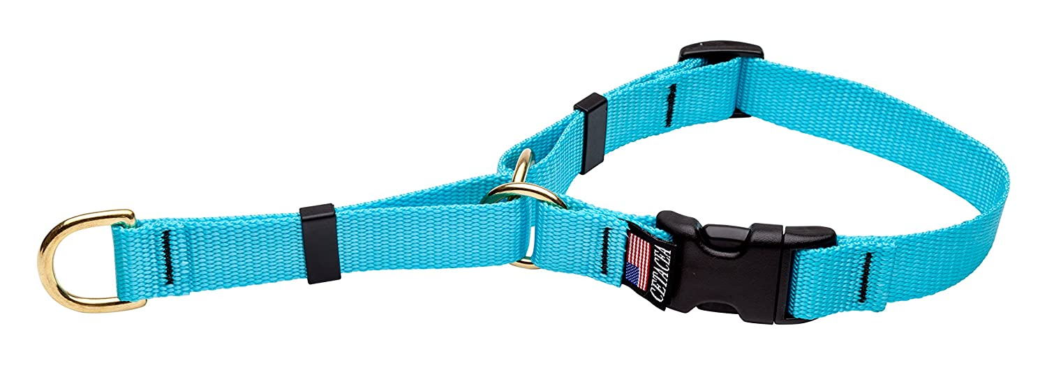 Turquoise Small Turquoise Small Cetacea Soft Martingale Collar with Quick Release, Small, Turquoise
