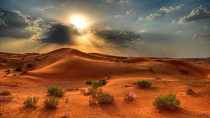 Avikalp Exclusive Awi2550 Desert Landscape Summer Sunset in