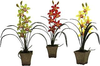 Orchidea Cymbidium W/vase (set da 3)