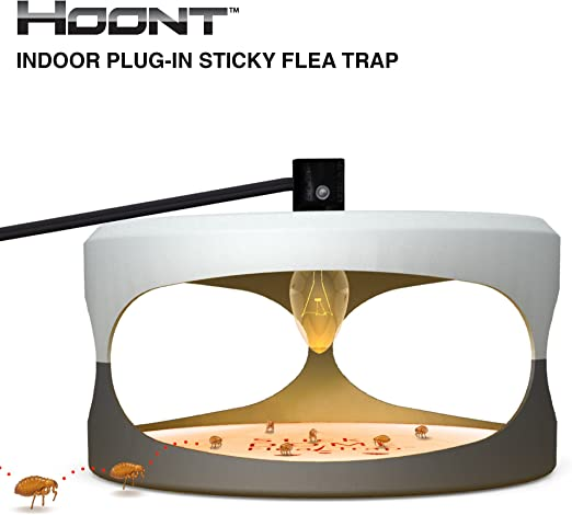 Hoont Indoor Plug in Sticky Flea Trap with Light and Heat Attracter (Includes 5 Adhesive Glue Boards) Get Rid of All Fleas, Bed Bugs, Flies, Etc.