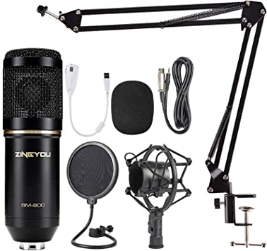 Zingyou Bm 800 Condenser Microphone Bundle Professional Computer Mic Set For Studio Recording Broadcasting With Microphone Stand Metal Shock Mount And Pop Filter Black Amazon Ca Electronics