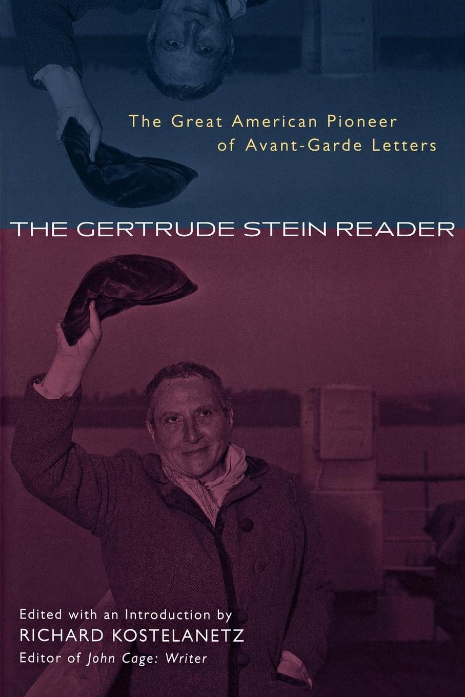 The Gertrude Stein Reader: The Great American Pioneer of Avant-Garde Letters PDF