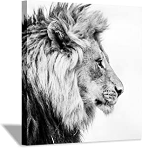 Hardy Gallery Lion Art Wall Decor Picture: Wildlife Portrait Graphic Artwork Print Painting on Wrapped Canvas (24''x24'')