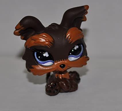 Amazoncom Yorkie 509 Brown Clear Eyes Littlest Pet Shop