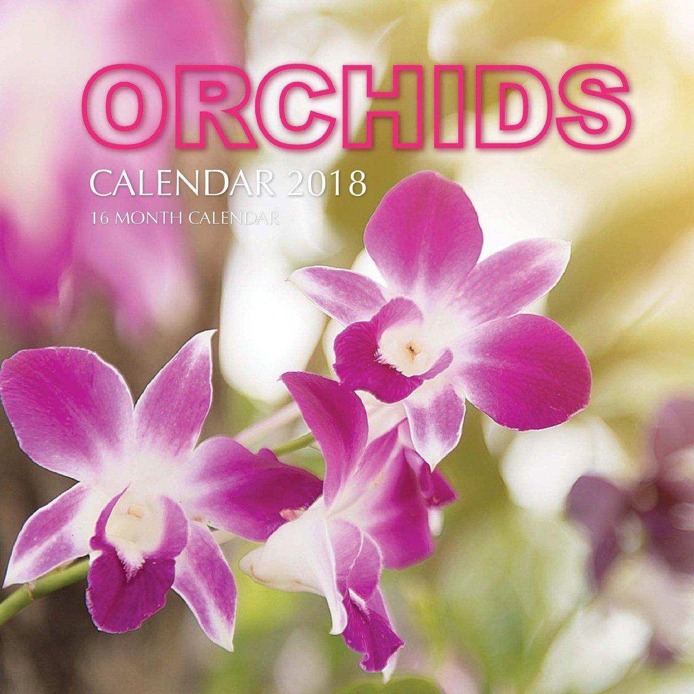 Download Orchids Calendar 2018: 16 Month Calendar ebook