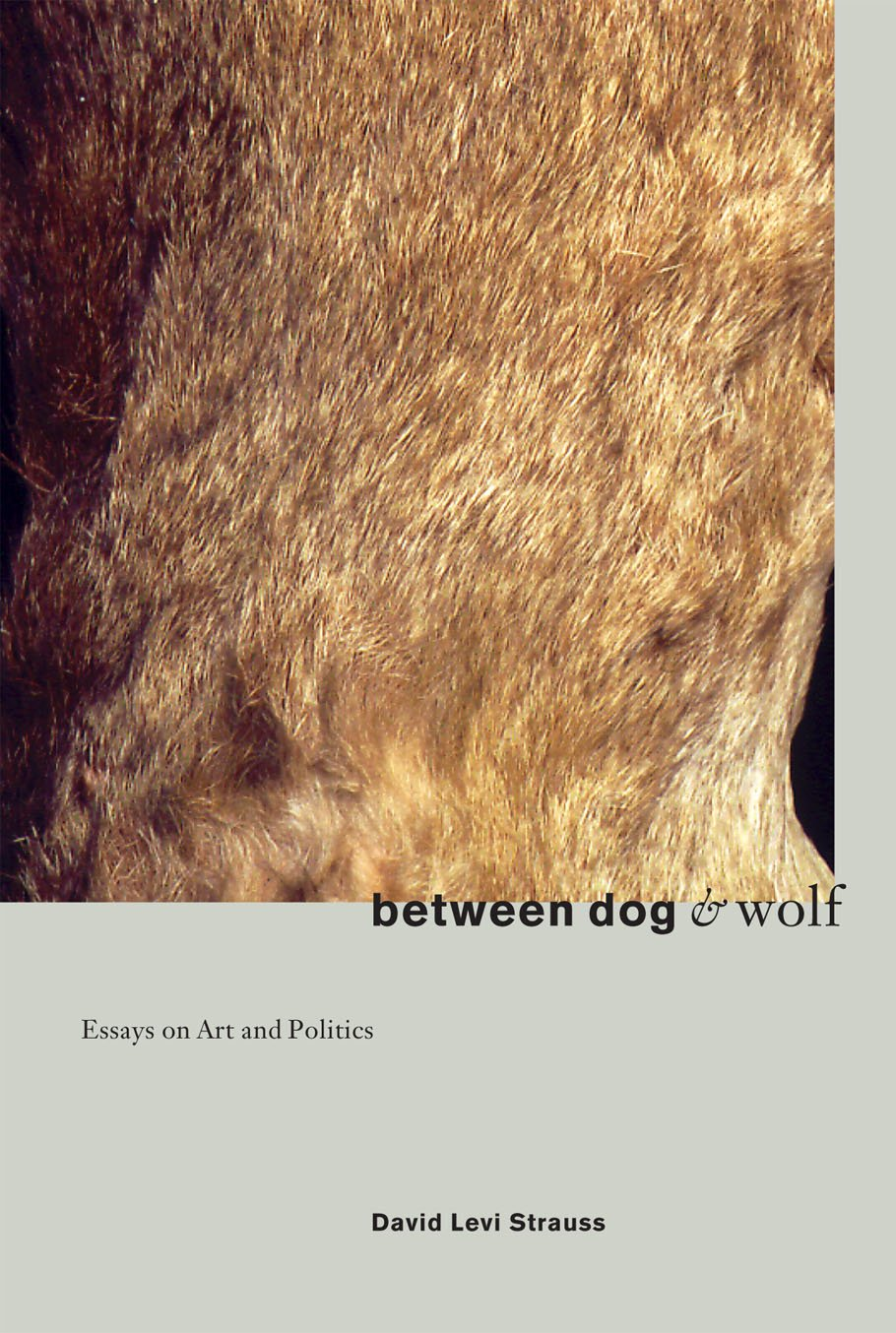between dog and wolf essays on art politics david levi strauss between dog and wolf essays on art politics david levi strauss 9781570270932 com books