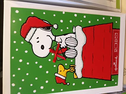 Snoopy Christmas Cards.Amazon Com Snoopy And Woodstock With Gift On Doghouse