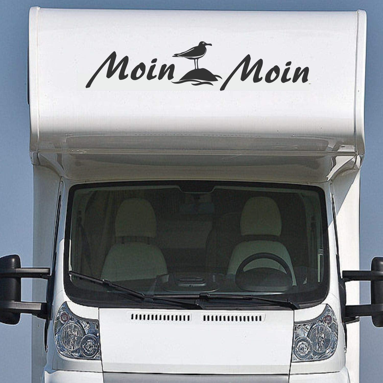 Pegatina Promotion Wohnmobil Wohnwagen Aufkleber Schriftzug Moin Moin Ca 160cm Mit Möwe Auf Stein Womi Wowa Camping Van Sticker Autoaufk Auto