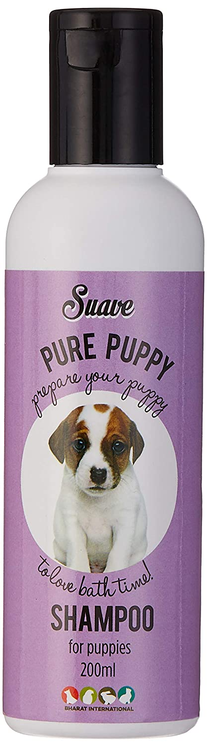 Buy Suave Puppy Shampoo, 200 ml Online at Low Prices in India