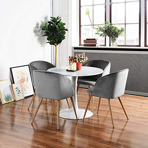 HomyCasa Dining Chair Accent Chair Set of 2