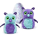 Hatchimals Hatching Egg Interactive Creature Burtle Baby Toy, Purple/Teal