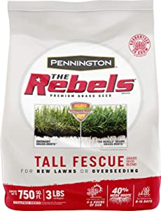 Pennington The Rebels Tall Fescue Grass Seed Blend, 3 Pounds