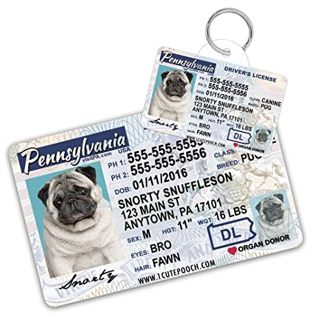 f8d380a03ff3 Pennsylvania Driver License Custom Dog Tag for Pets and Wallet Card -  Personalized Pet ID Tags