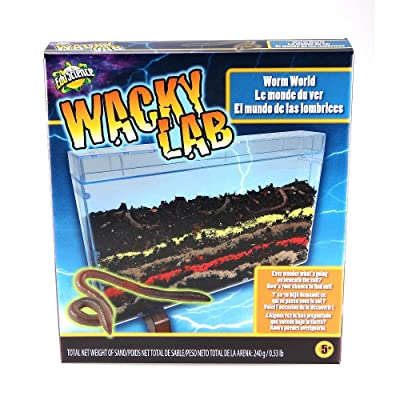 Wacky Lab- Worm World: Toys & Games
