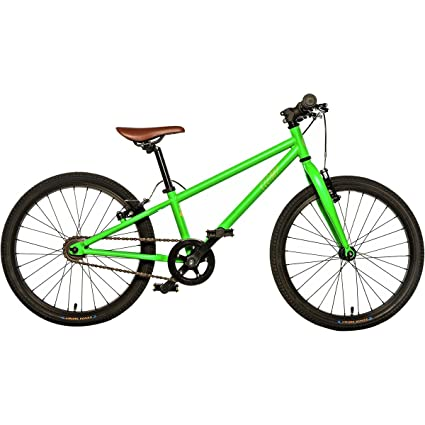 41cdeb39487 Amazon.com : Cleary Bikes Owl 20in 3 Speed Bike - Kids' Astroturf ...