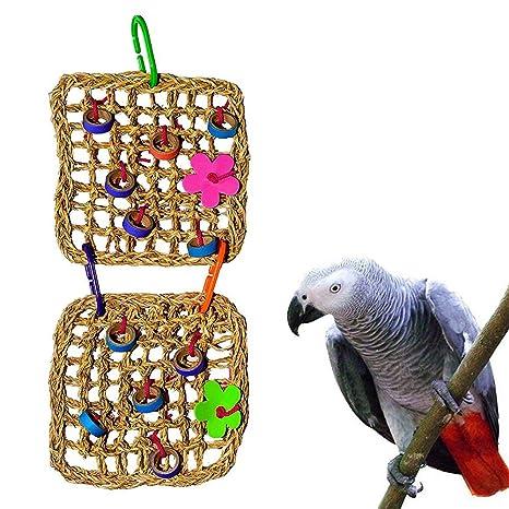 Danigrefinb - Hamaca Colgante para pájaros (Doble Malla, Pajita y ...