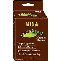 Mina Eyebrow Henna Medium Brown Regular Pack & Tinting Kit For Brow Dye