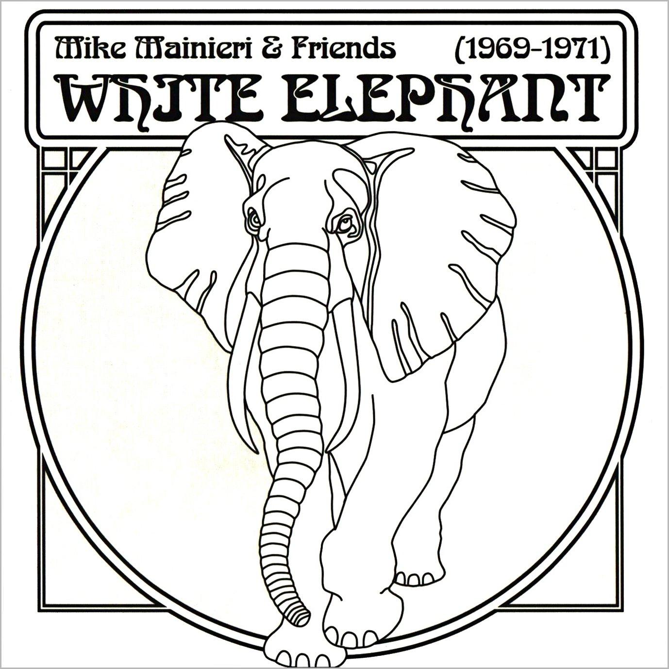 White Elephant   Mike Mainieri Amazon.de Musik