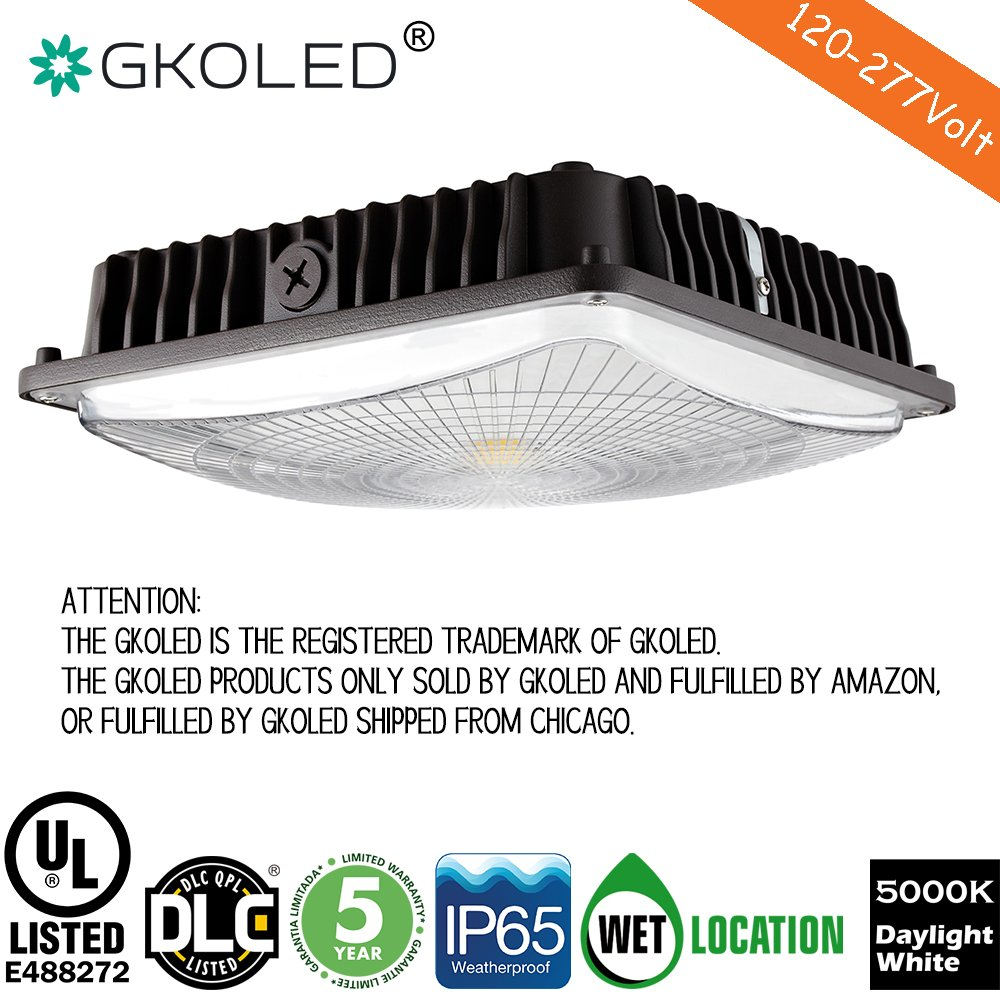 GKOLED 65W LED Canopy Light, 300-350W MH/Hps/HID Replacement, 5000K Daylight White, 6600Lumen, 100-277VAC, IP65 Waterproof and Outdoor Rated, UL-Listed and DLC-Qualified, 5 Years Warranty