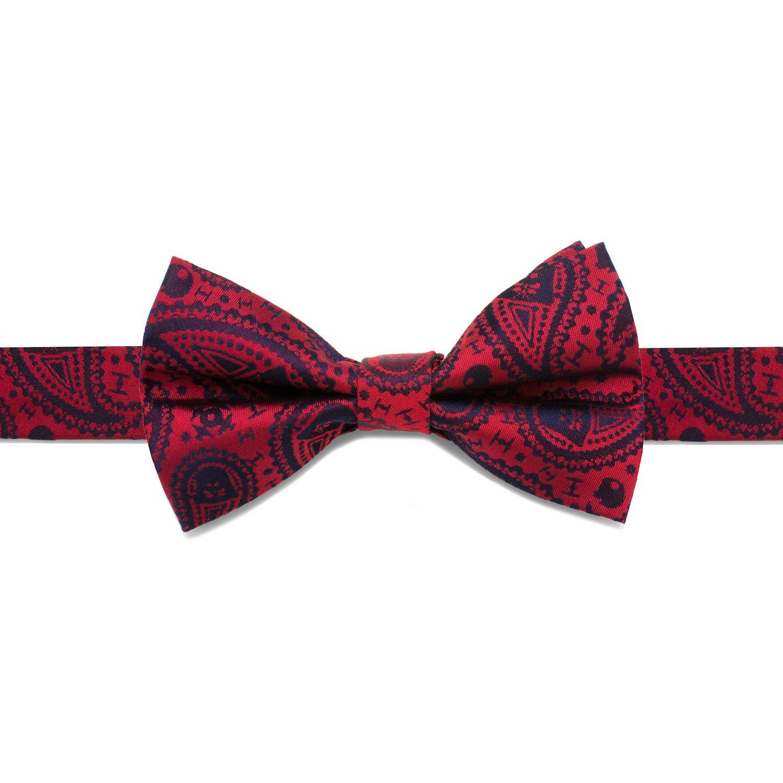 Star Wars Darth Vader Paisley Big Boys' Silk Bow Tie, Officially Licensed