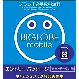 ビッグローブ BIGLOBEモバイル エントリーパッケージ ドコモ回線SIMカード データ通信/音声通話 [音声通話3ギガ以上でキャッシュバック] EP-1