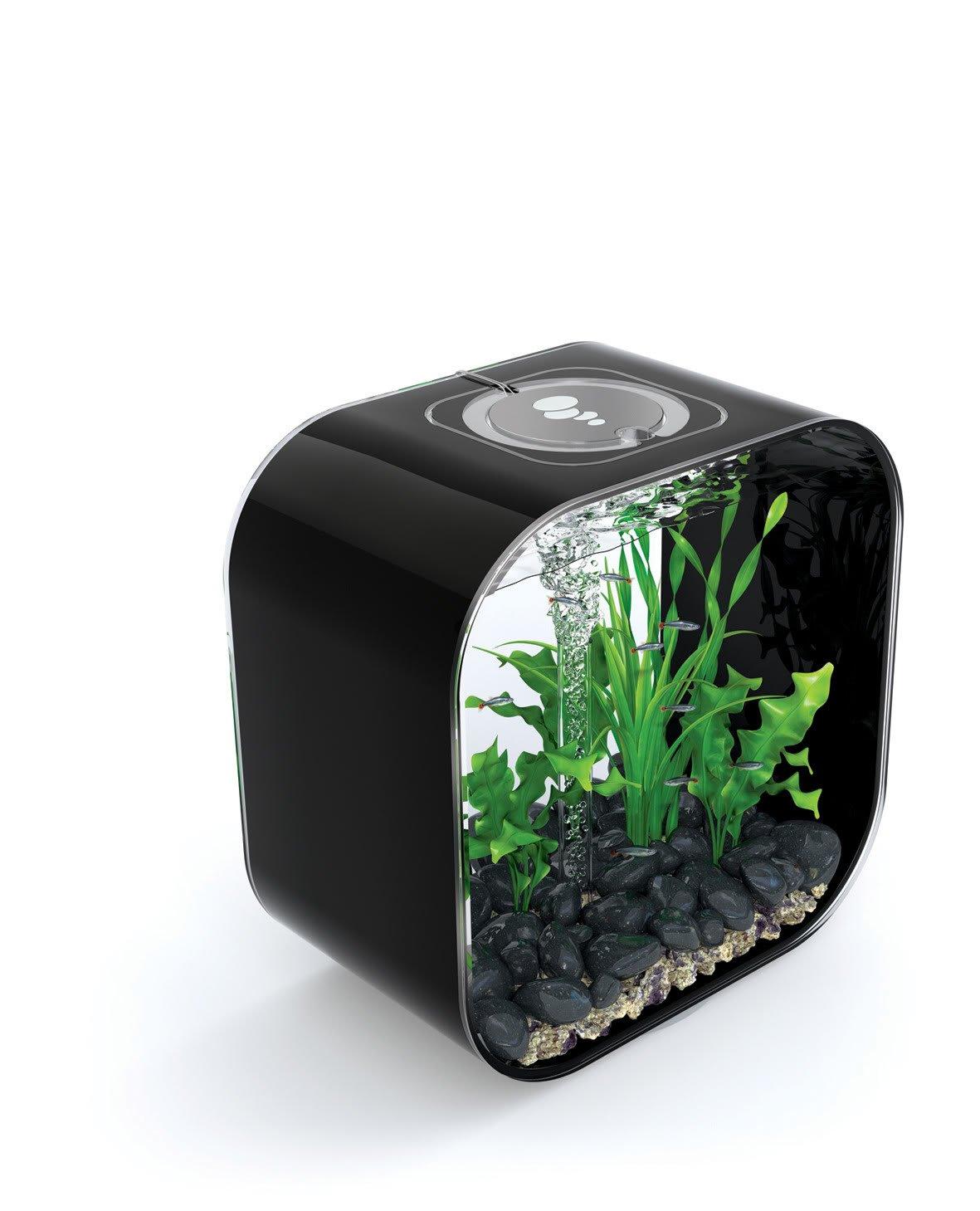 Black biOrb Life Square 30 Cold Water, Black, Intelligent 24hr LED Light