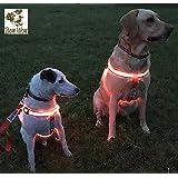 Bow Wow lumineux Glow Harnais pour Animaux Domestiques de Petite et Grande Taille. LED Light Up Sangle en nylon avec massif ou clignotant Options