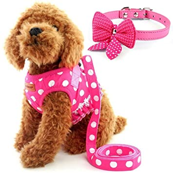 Amazon Com Cute Small Dog Harness Ladies Polka Dots Dog Vest