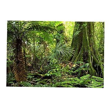 Homyl Cartel Fondo Fantasía de Acuario Complimentos Pecera Acuario Plantado Fácilmente Cómodo - Estilo 1 S: Amazon.es: Jardín