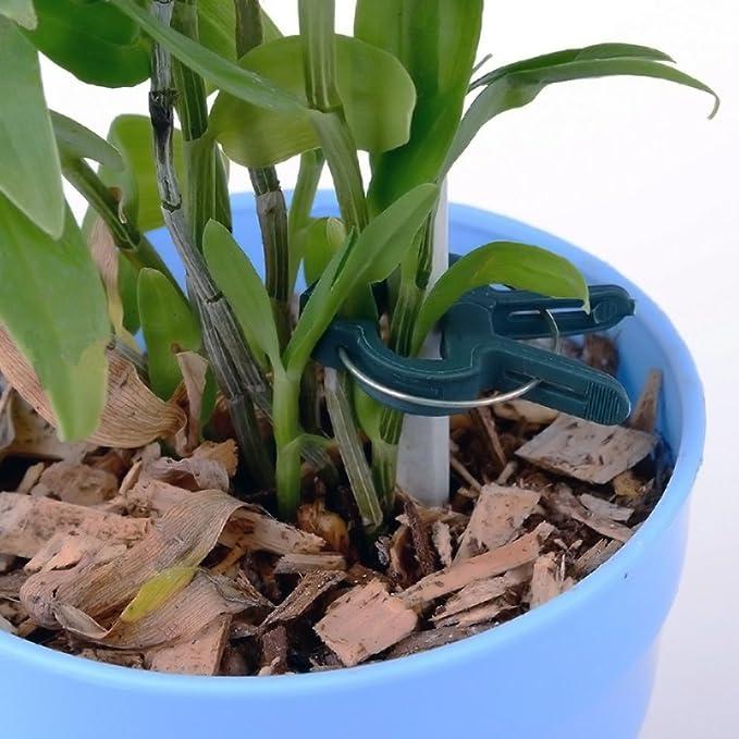 szdc88 Jardín Clip Traje Plástico Flor Planta Palanca Loop Pinza ...