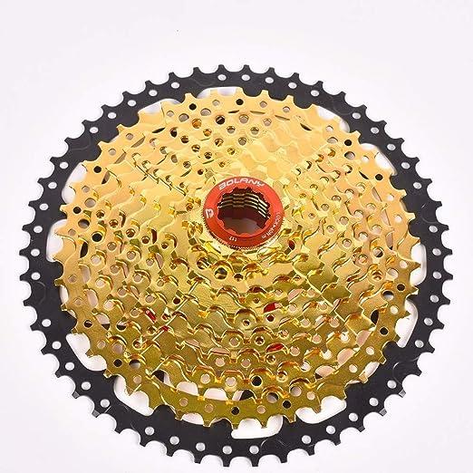 Tornillo De Bicicleta En Rueda Libre Bicicleta De Montaña con ...