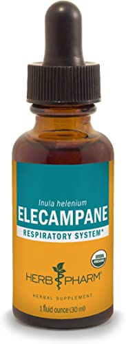 Herb Pharm Certified Organic Elecampane Liquid Extract for Respiratory System Support – 1 Ounce