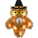 "Impact 16"" Lighted Pilgrim Owl Thanksgiving Window Silhouette Decoration"