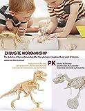 AKINGSHOP Dinosaur Excavation Kits for Kids,Dino