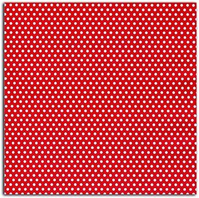 Dailylike lke14 – Retal de Tela algodón plastificado Rojo 45 x 53 ...